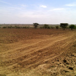 Section of ploughed land 2