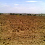 Section of ploughed land3